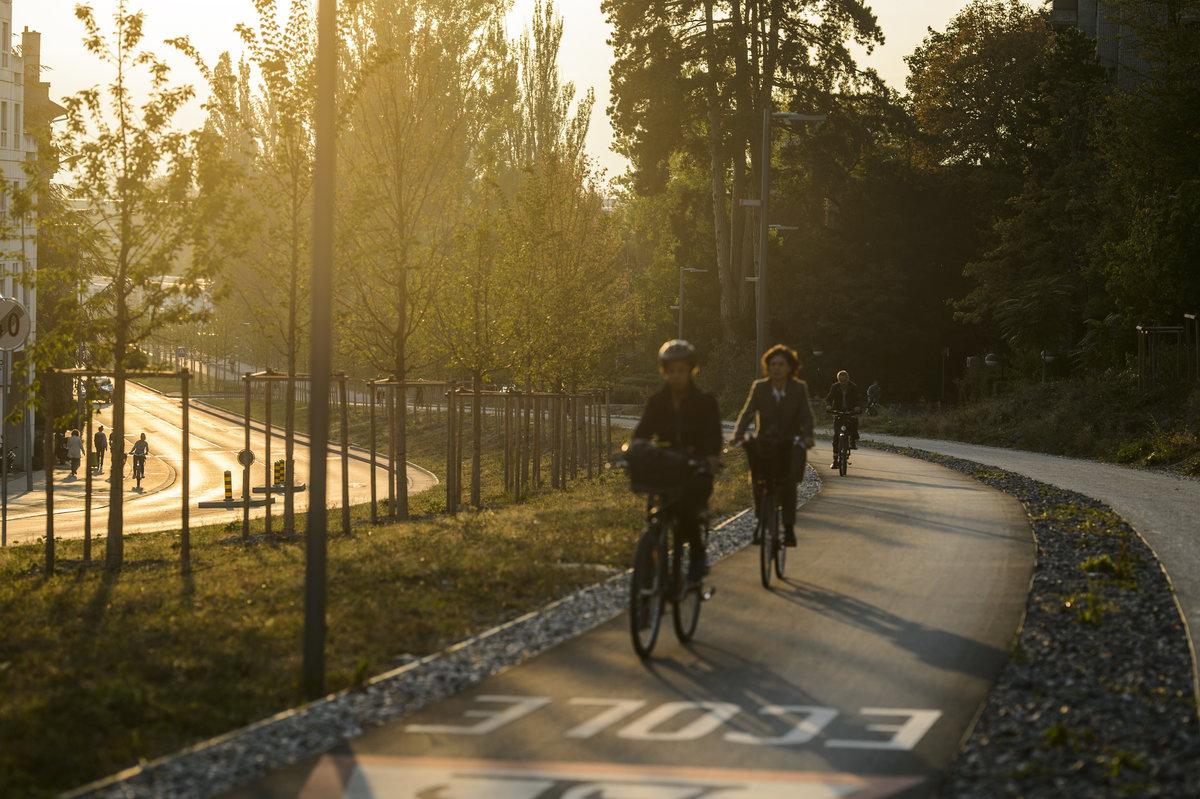 Cyclistes sur une piste cyclable